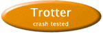 Trotter special needs crashed tested transport chair
